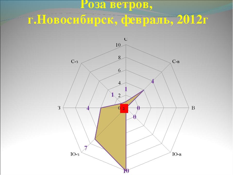 Роза ветров, г.Новосибирск, февраль, 2012г