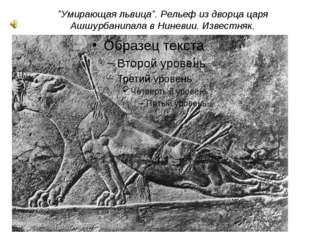 """""""Умирающая львица"""". Рельеф из дворца царя Ашшурбанипала в Ниневии. Известняк."""