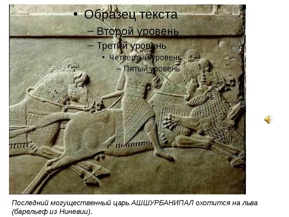 Последний могущественный царь АШШУРБАНИПАЛ охотится на льва (барельеф из Нин...