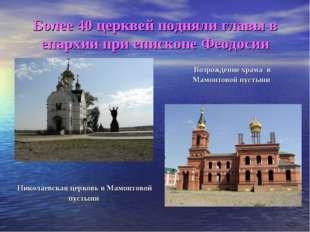 Более 40 церквей подняли главы в епархии при епископе Феодосии Николаевская ц