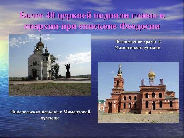 Более 40 церквей подняли главы в епархии при епископе Феодосии Николаевская ц...