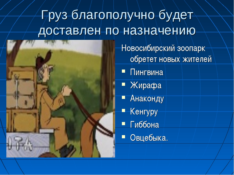 Груз благополучно будет доставлен по назначению Новосибирский зоопарк обретет...