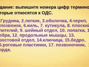 Задание: выпишите номера цифр терминов, которые относятся к ОДС. 1.Грудина, 2