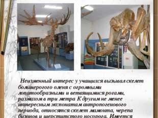 I-зал природы Ознакомление видами животных и растений Неизменный интерес у уч