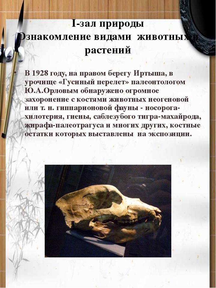 I-зал природы Ознакомление видами животных и растений В 1928 году, на правом...