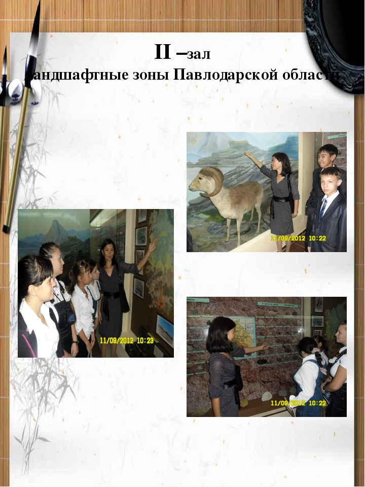II –зал ландшафтные зоны Павлодарской области