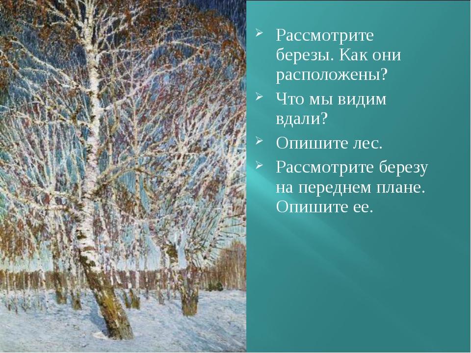 Рассмотрите березы. Как они расположены? Что мы видим вдали? Опишите лес. Рас...