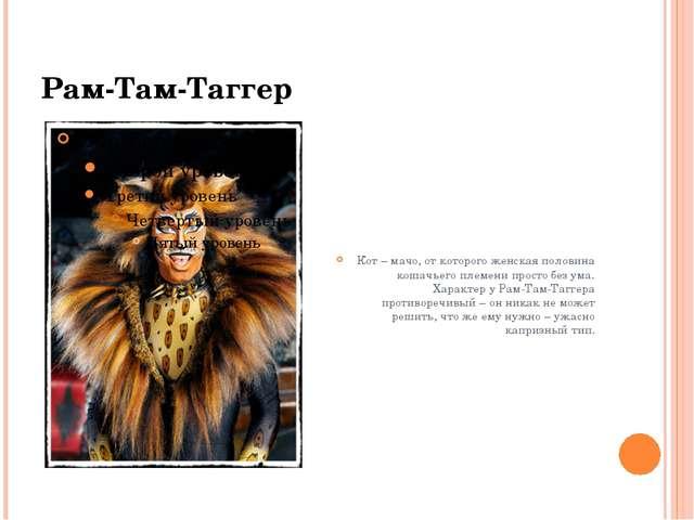 Рам-Там-Таггер Кот – мачо, от которого женская половина кошачьего племени про...