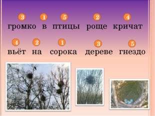 громко птицы в роще кричат вьёт на сорока дереве гнездо 3 1 5 2 4 5 3 1 2 4