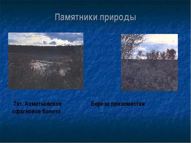 Памятники природы Тат. Ахметьевское Береза приземистая сфагновое болото