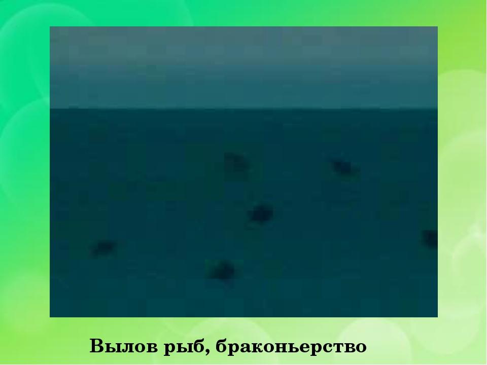 Вылов рыб, браконьерство