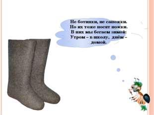 Не ботинки, не сапожки. Но их тоже носят ножки. В них мы бегаем зимой: Утром