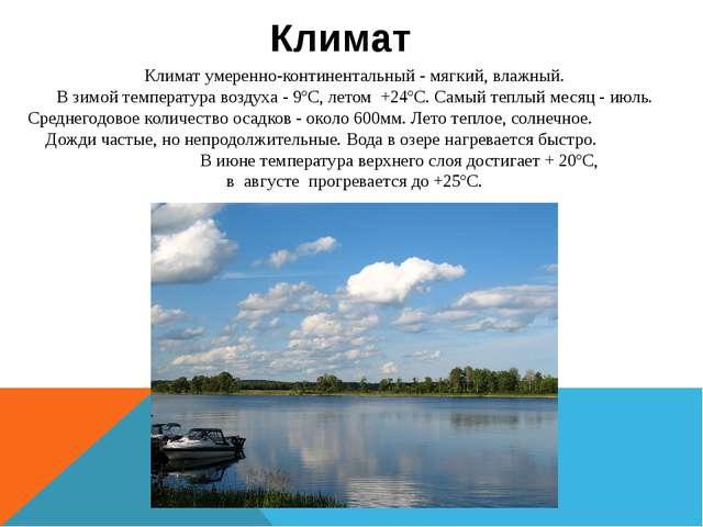 Климат умеренно-континентальный - мягкий, влажный. В зимой температура возду...