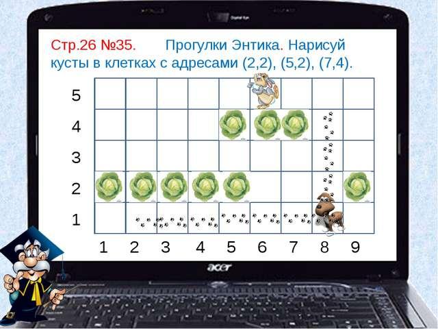 Стр.26 №35. Прогулки Энтика. Нарисуй кусты в клетках с адресами (2,2), (5,2),...