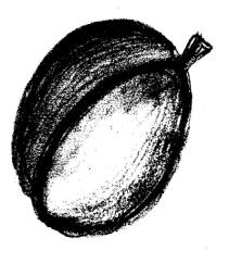 черные рисунки 173