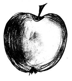 черные рисунки 182