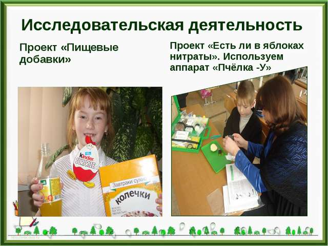Исследовательская деятельность Проект «Пищевые добавки» Проект «Есть ли в ябл...