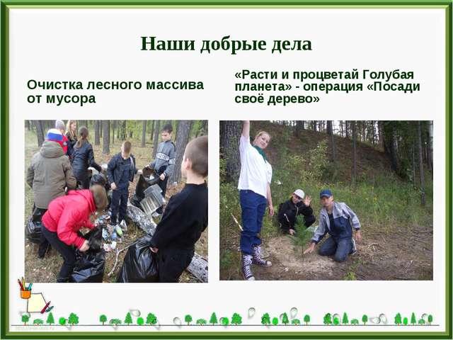 Наши добрые дела Очистка лесного массива от мусора «Расти и процветай Голубая...