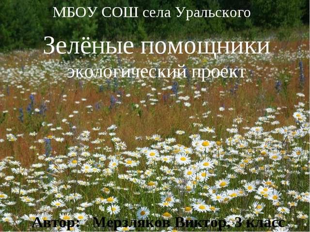 * * МБОУ СОШ села Уральского Зелёные помощники экологический проект Автор: Ме...
