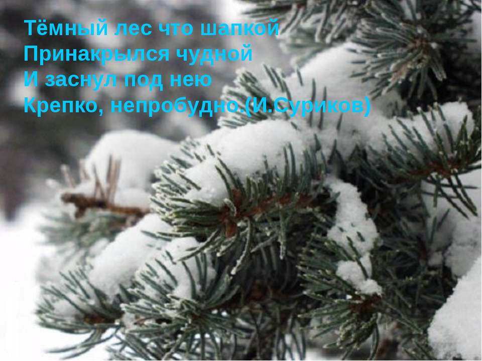Тёмный лес что шапкой Принакрылся чудной И заснул под нею Крепко, непробудно....