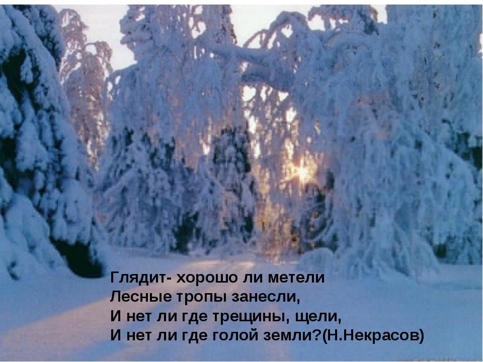 Глядит- хорошо ли метели Лесные тропы занесли, И нет ли где трещины, щели, И...
