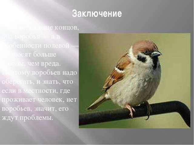 Заключение Итак, в конце концов, оба воробья — а в особенности полевой — прин...