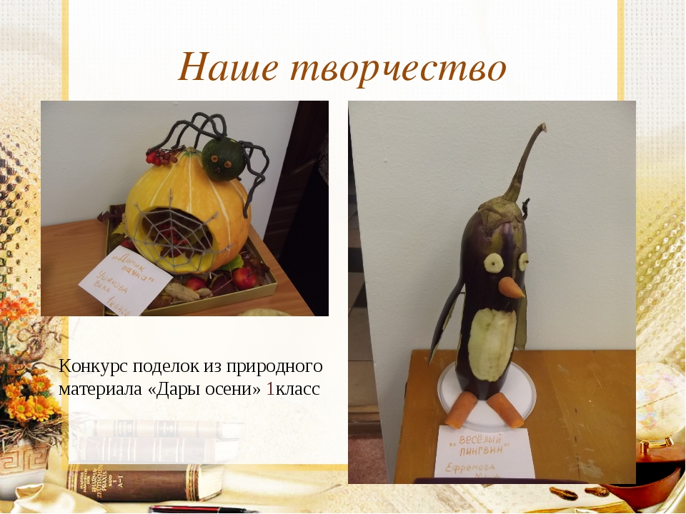 Наше творчество Конкурс поделок из природного материала «Дары осени» 1класс