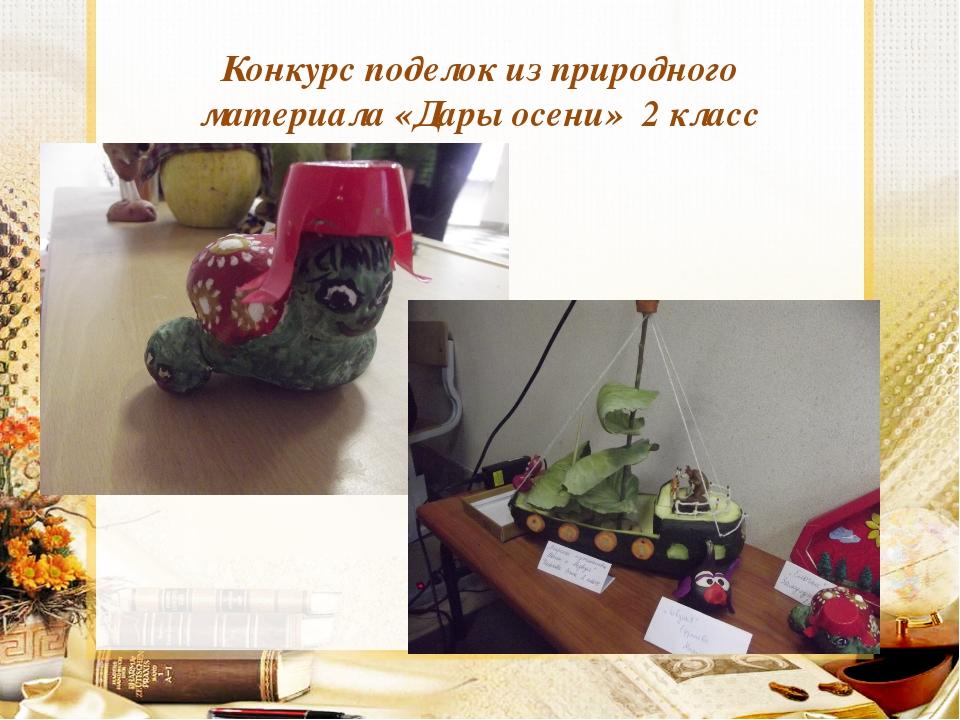 Конкурс поделок из природного материала «Дары осени» 2 класс