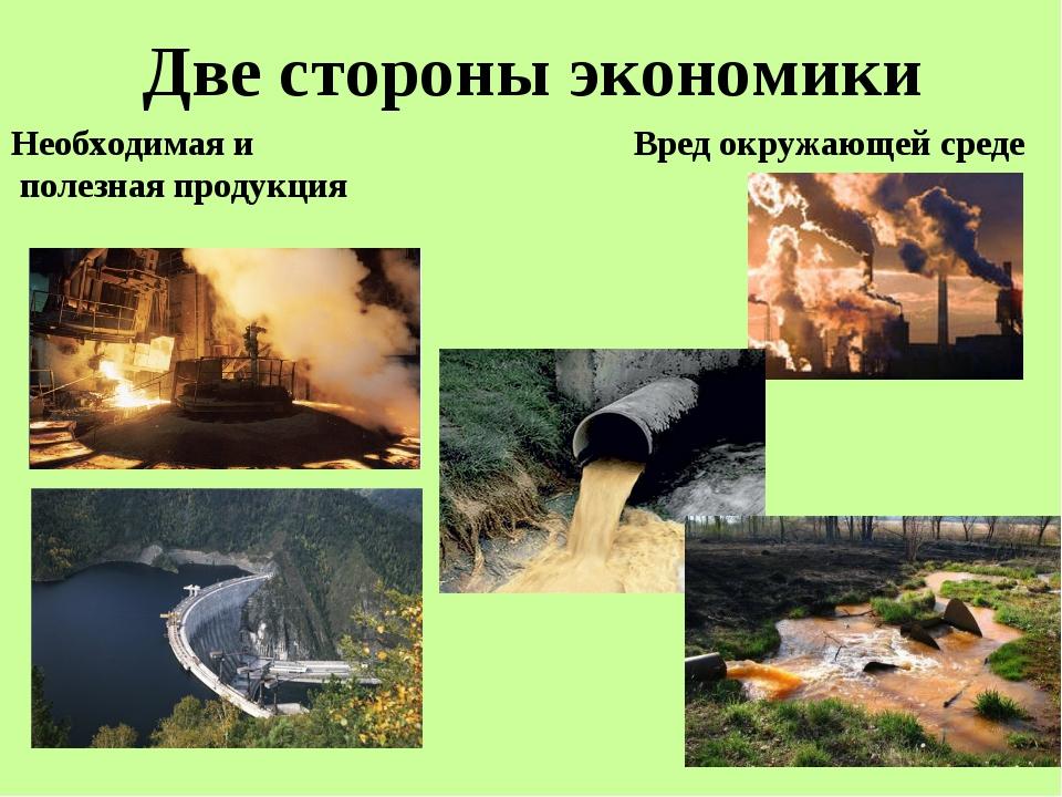 Две стороны экономики Необходимая и полезная продукция Вред окружающей среде