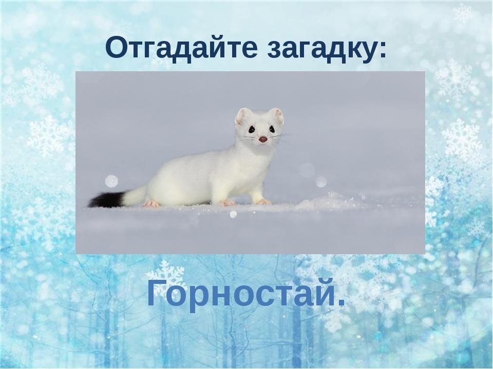 Отгадайте загадку: Только ляжет снег несмело И покроет все места, Становлюсь...