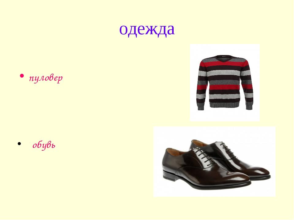 одежда пуловер обувь