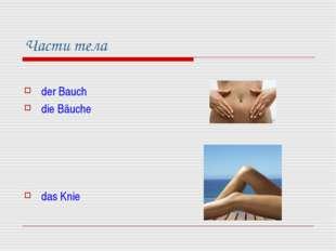 Части тела der Bauch die Bäuche das Knie
