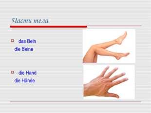 Части тела das Bein die Beine die Hand die Hände