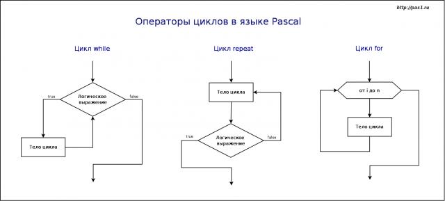 Циклы языка программирования Pascal