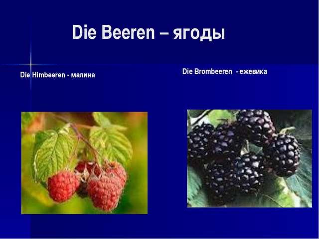 Die Beeren – ягоды Die Himbeeren - малина Die Brombeeren - ежевика
