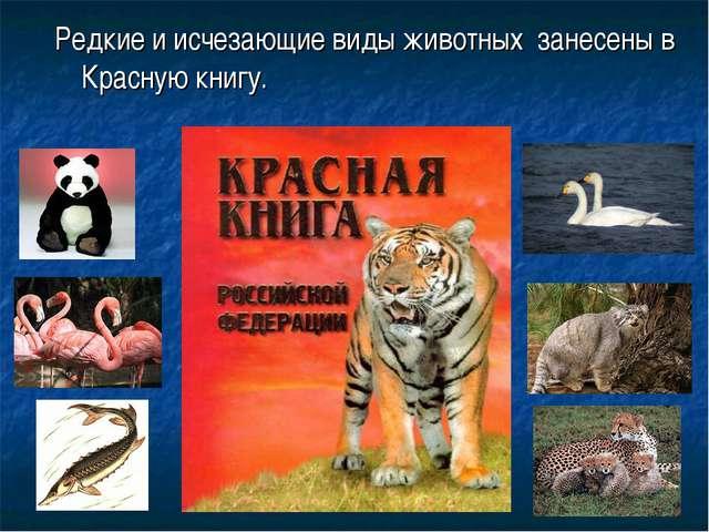 Редкие и исчезающие виды животных занесены в Красную книгу.