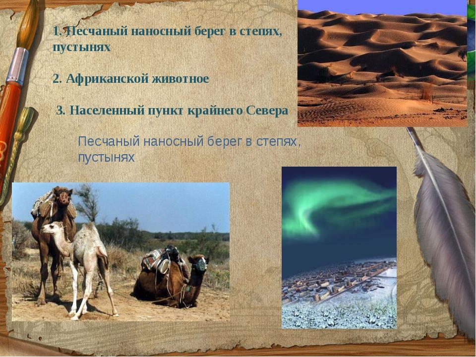 1. Песчаный наносный берег в степях, пустынях 2. Африканской животное 3. Насе...