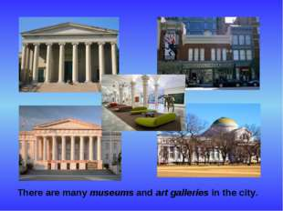 There are many museums and art galleries in the city.