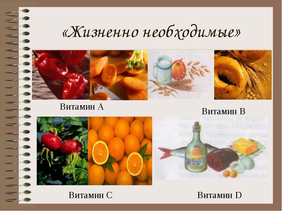 «Жизненно необходимые» Витамин А Витамин В Витамин С Витамин D