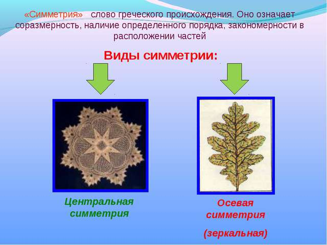 Виды симметрии: Осевая симметрия (зеркальная) Центральная симметрия «Симметри...