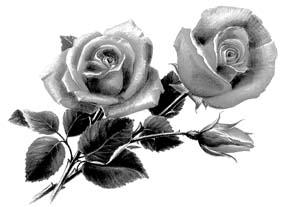 http://refdb.ru/images/1280/2559626/749a8ca5.jpg