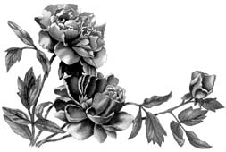 http://refdb.ru/images/1280/2559626/c3ca3511.jpg