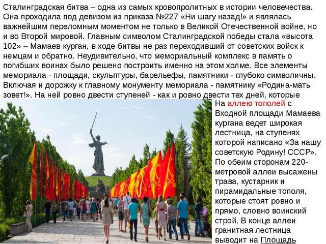 Сталинградская битва – одна из самых кровопролитных в истории человечества. О...