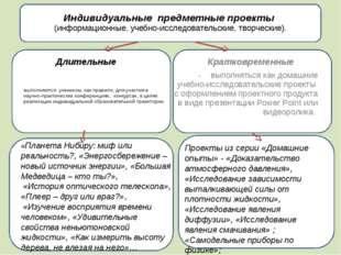 Индивидуальные предметные проекты (информационные, учебно-исследовательские,