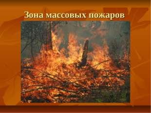 Зона массовых пожаров
