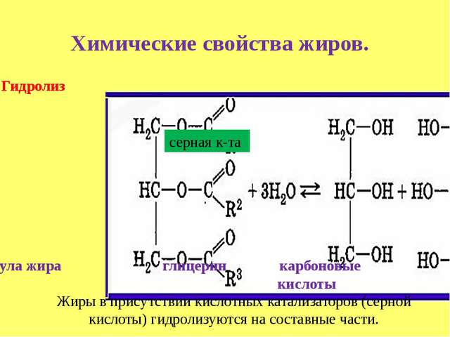Химические свойства жиров. Гидролиз молекула жира глицерин карбоновые кислоты...
