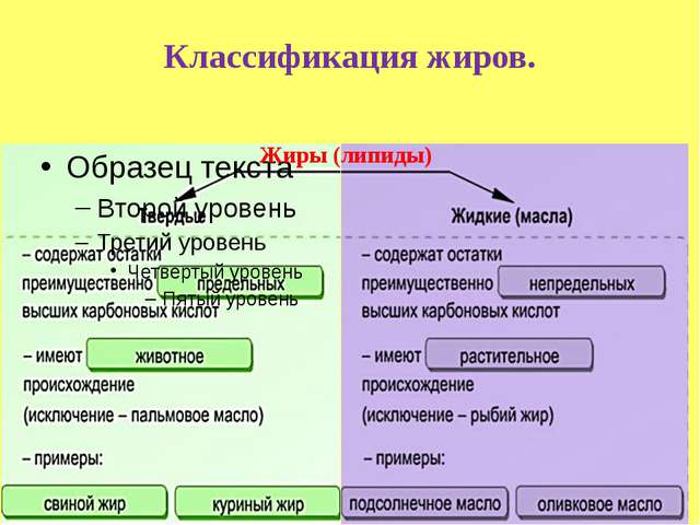 Классификация жиров. Жиры (липиды)