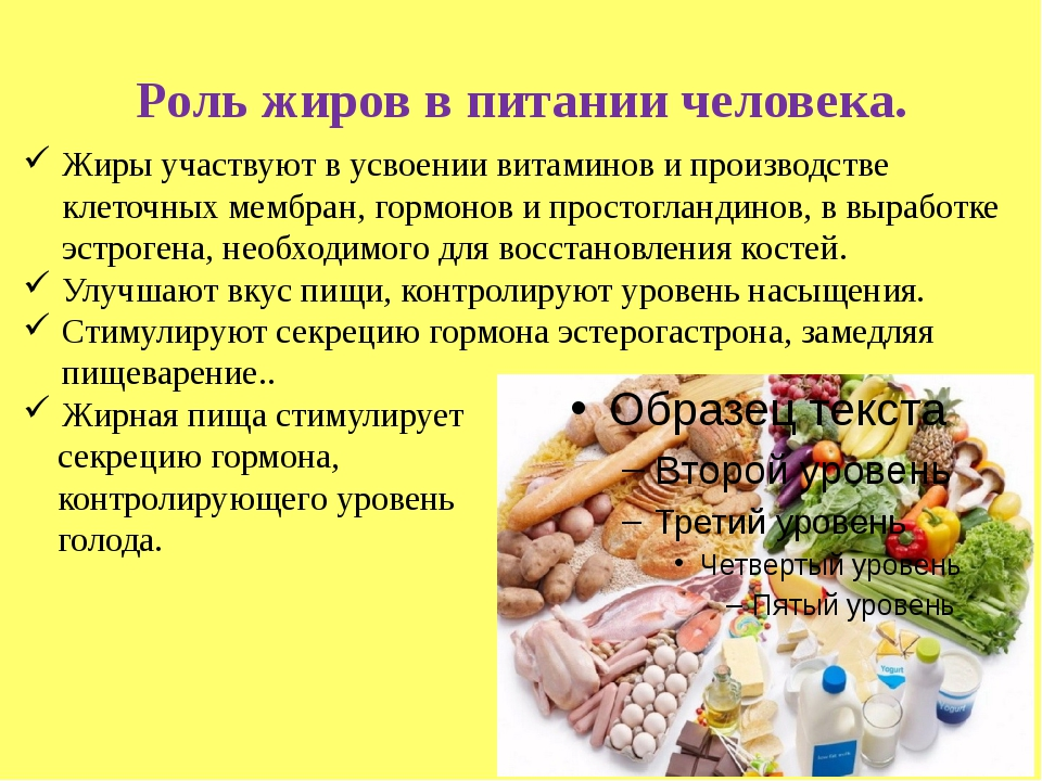 Роль жиров в питании человека. Жиры участвуют в усвоении витаминов и производ...