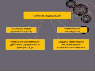 Свойства модификаций Изменения имеют групповой характер Изменения соответств
