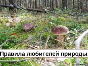 «Правила любителей природы»